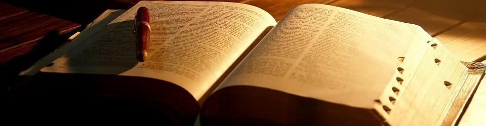 Pastor Hale Bible